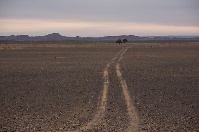 """road to """"two trees"""""""