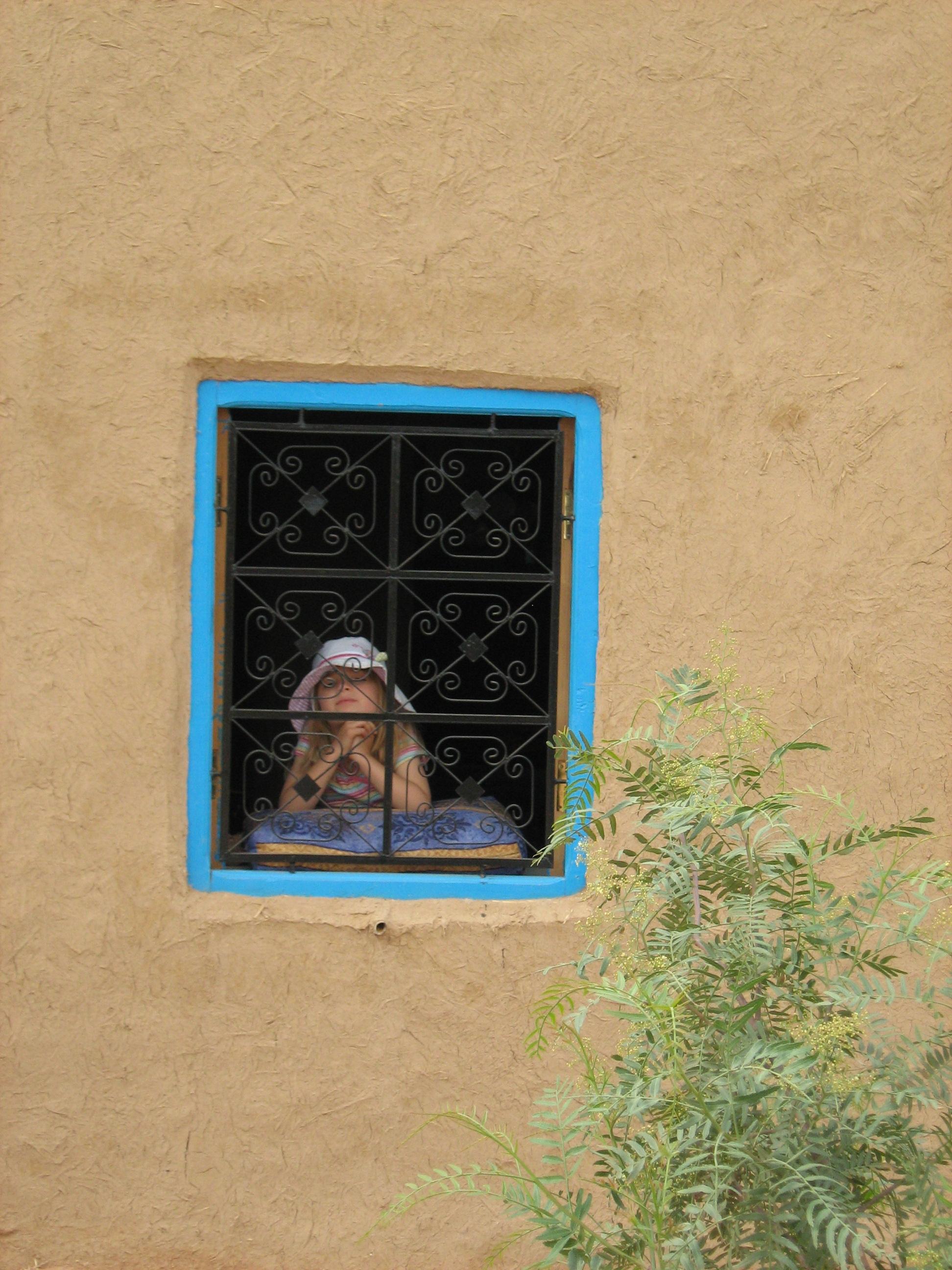Nellie at the window, cafe tissardmine
