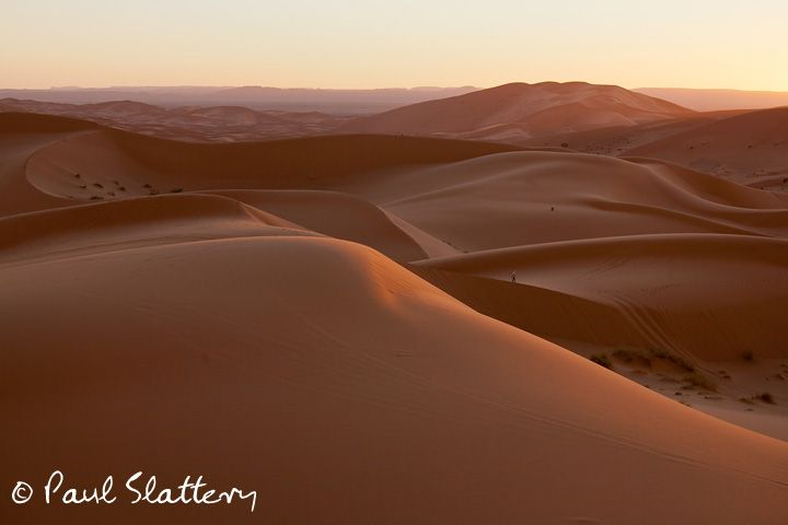 6591s Sunset in the Erg Chebbi dunes.jpg